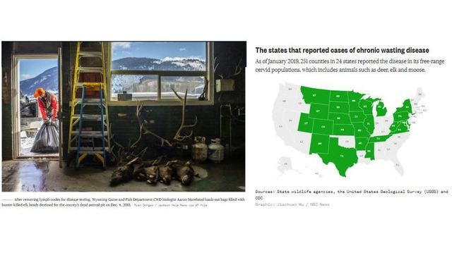 Chronic Wasting Disease composite 2-17-19_1550436837161.JPG_73512543_ver1.0_640_360 (1)_1550445474924.jpg.jpg