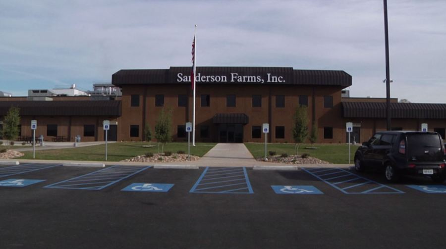 Special Report Sanderson Farms Still Hiring Becomes One Of East Texas Largest Employers Ketk Com Fox51 Com