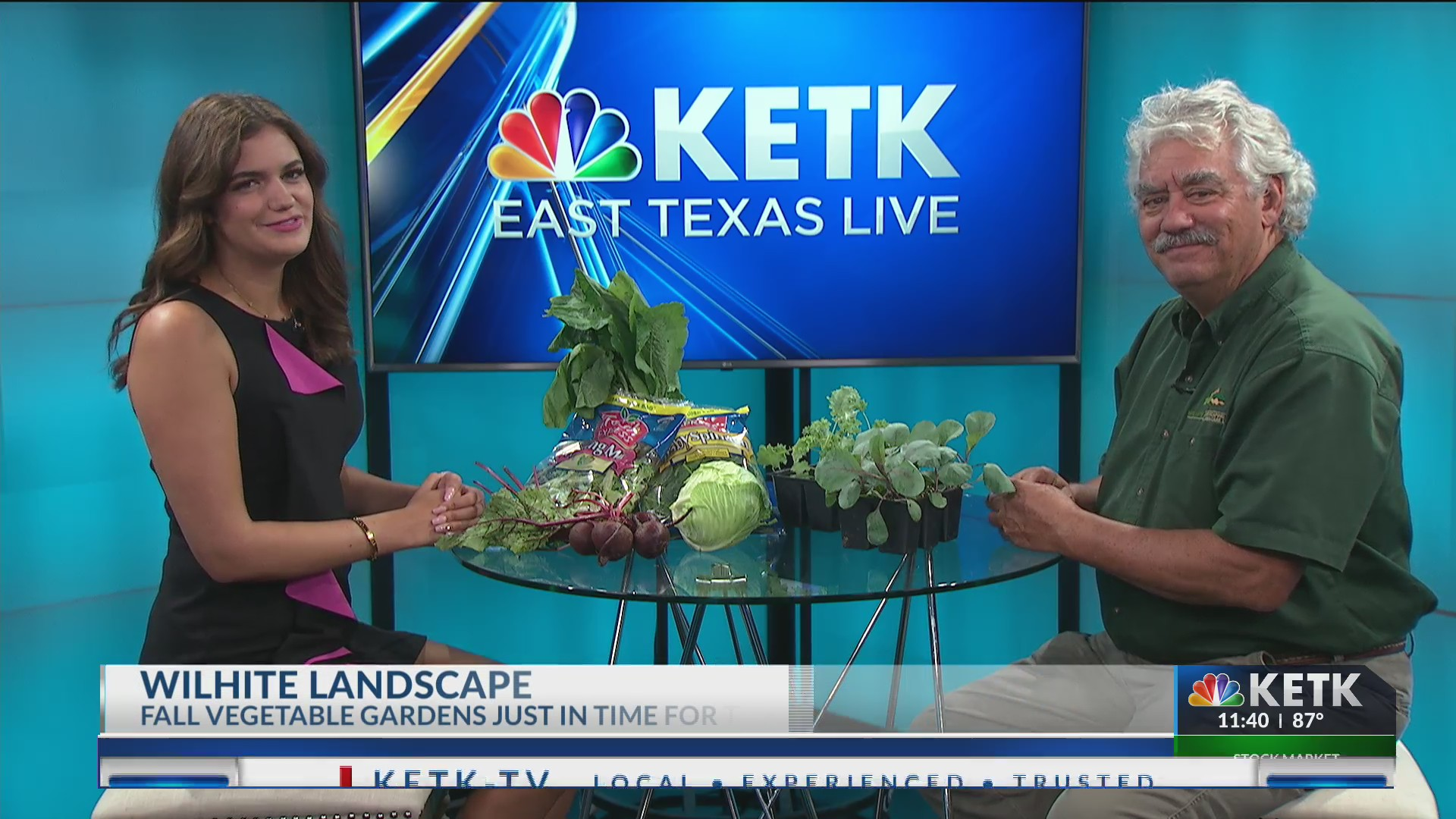 Wilhite Landscaping Stops By To Talk About Those Fall Vegetable Gardens And How To Maintain Them Ketk Com Fox51 Com